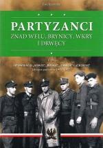 Okładka książki: Partyzanci znad Welu, Brynicy, Wkry i Drwęcy