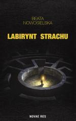 Okładka książki: Labirynt strachu