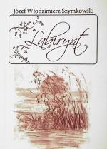 Okładka książki: Labirynt