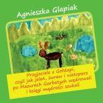 Okładka książki: Przyjaciele z Gołdapi, czyli Jak jeleń, żuraw i nietoperz po Mazurach Garbatych wędrowali i księgi mądrości szukali
