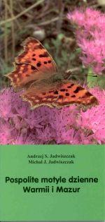 Okładka książki: Pospolite motyle dzienne Warmii i Mazur