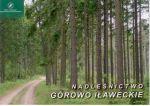 Okładka książki: Nadleśnictwo Górowo Iławeckie
