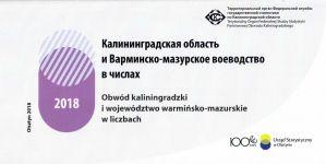 Okładka książki: Kaliningradskaâ oblast' i Varminsko-mazurskoe voevodstvo v čislah 2018