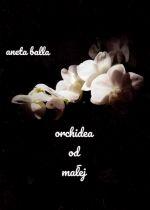 Okładka książki: Orchidea od małej