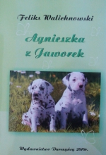 Okładka książki: Agnieszka z Jaworek