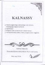 Okładka książki: Kalnassy